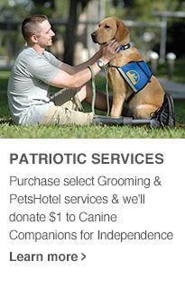 Patriotic Dog Services At Petsmart Service Animal Doggie Day Camp Patriotic Dog