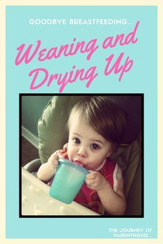 Breastfeeding Experience: Weaning and Drying Up   Weaning ...