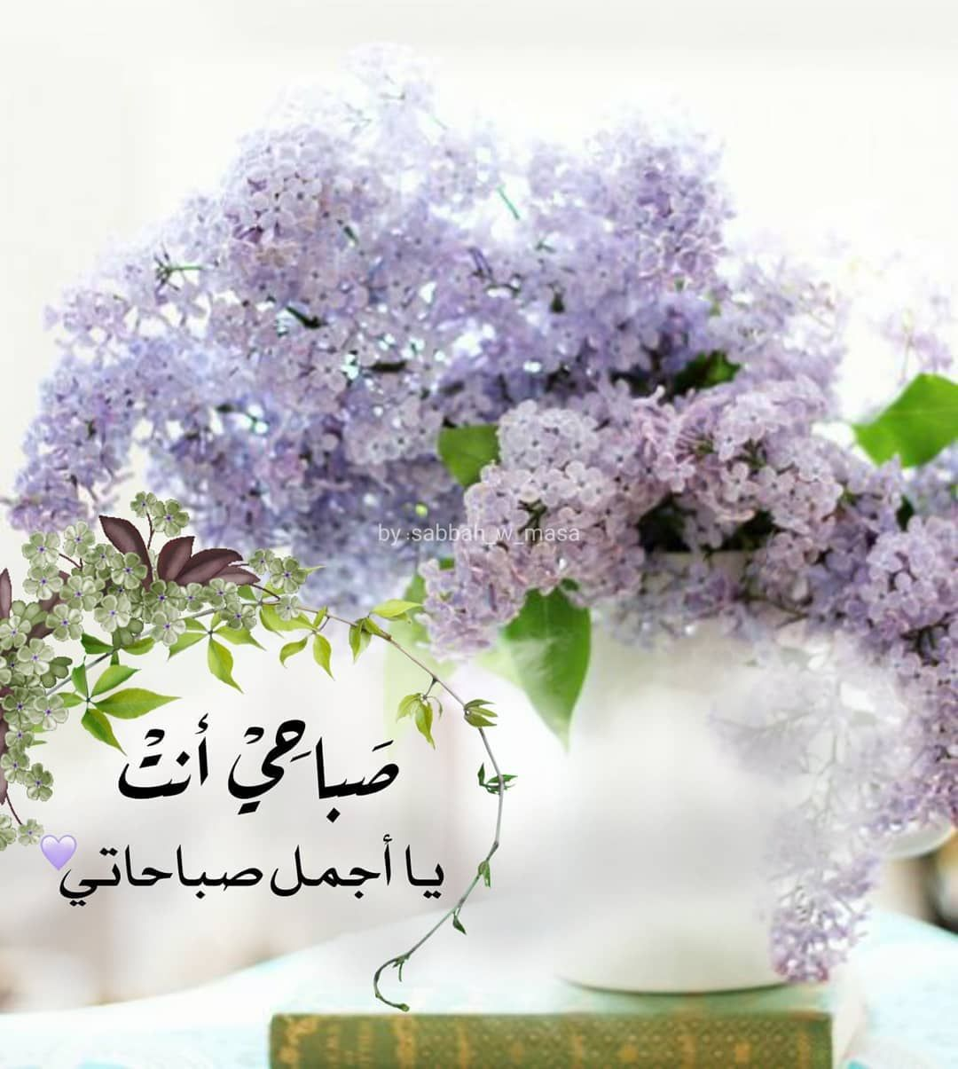 صبح و مساء On Instagram ص با حي أنت يا أجمل صباحاتي صباح الورد صباحيات Good Morning Arabic Love Flowers Quran Quotes Inspirational