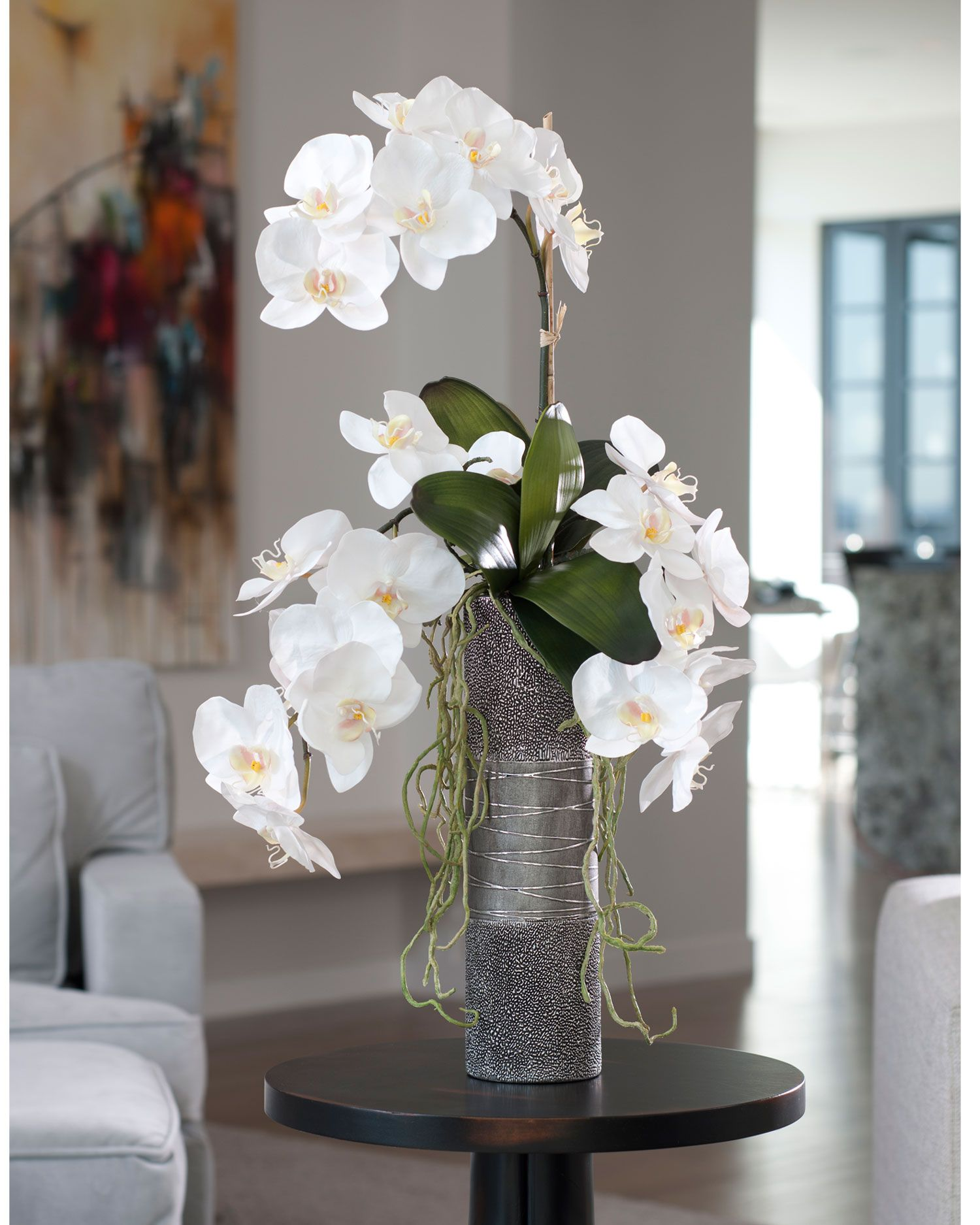 three luscious cream white phalaenopsis plants with large. Black Bedroom Furniture Sets. Home Design Ideas