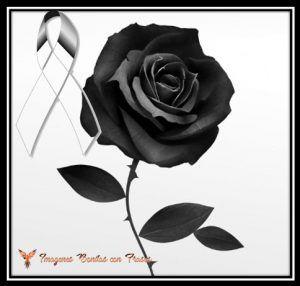 Monos De Luto Con Rosas Negras A Pinterest Monos De Luto