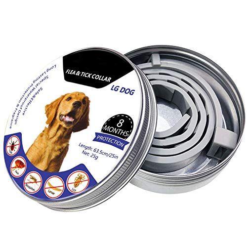 Pin on Dog Flea & Tick Control