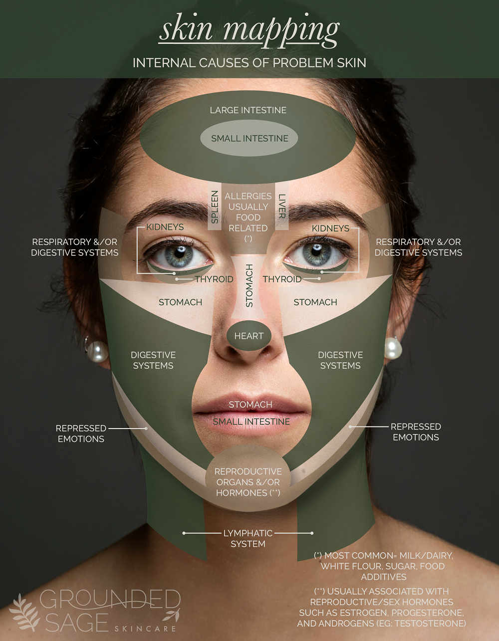 Skin Mapping Chart Pinpoint Internal Causes Of Problem Skin