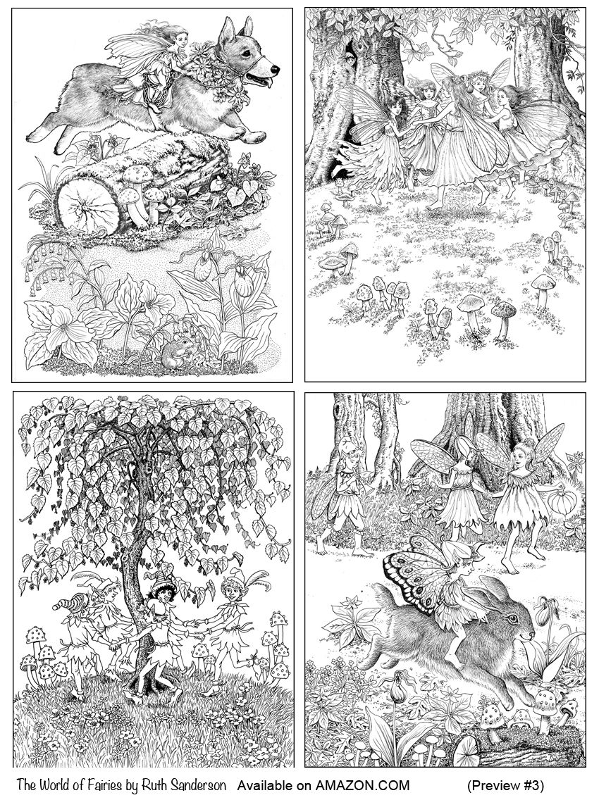 four frolicking fairies from the world of fairies coloring book