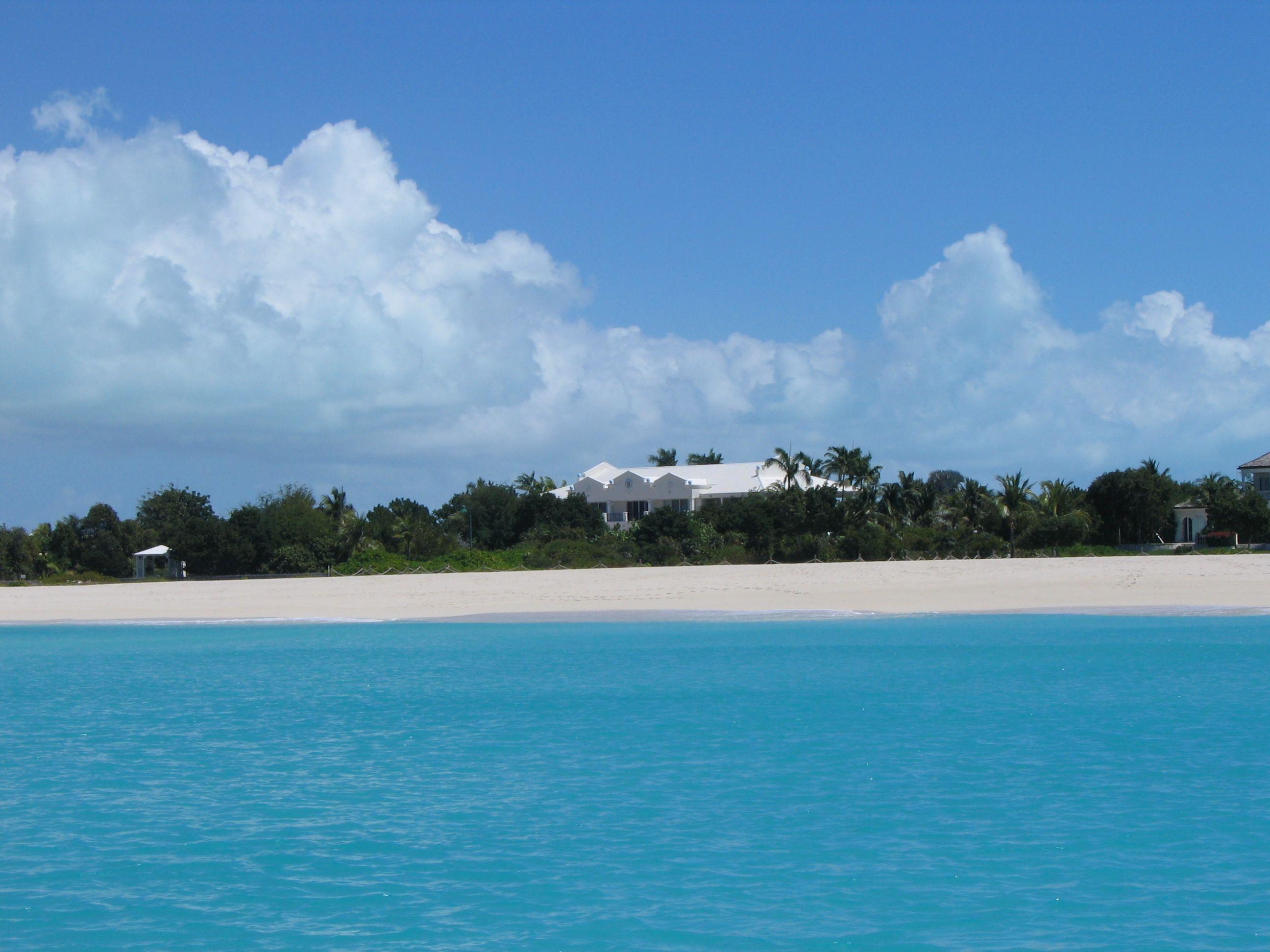 16+ Laguna beach animal hospital ideas in 2021