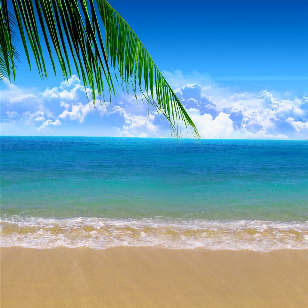Summer Beach iPad Air Wallpaper Download iPhone