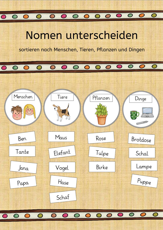 Nomen Grammatik Deutsch 11