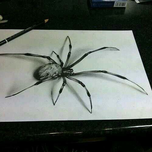 Spider drawing #3D | art | Spider drawing, Art drawings