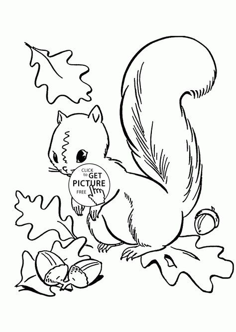 fall leaves and cute squirrel coloring pages for kids autumn printables free wuppsy - Squirrel Coloring Pages Printable