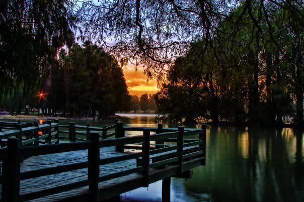 Fairmount Park Riverside California Map.Lake At Fairmount Park Riverside Ca I Remember Feeding The Ducks