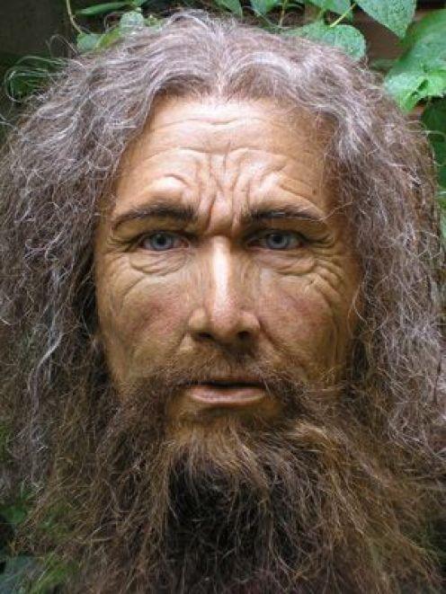 Homo Cro Magnon : magnon, Human