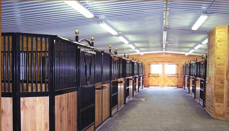 Http://blog.classic Equine.com/2012/12/
