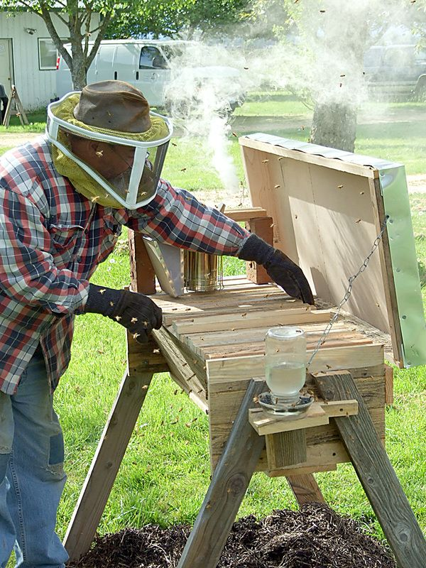 Picture | Top bar bee hive, Bee hive plans, Top bar hive