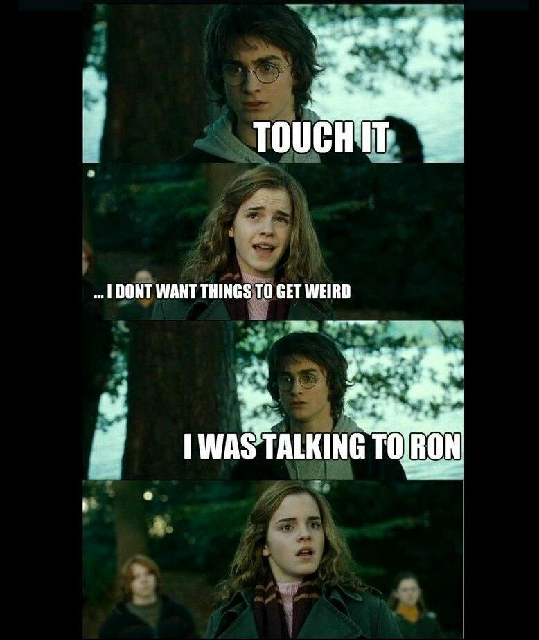 Touched Harry Potter Funny Harry Potter Memes Told You So