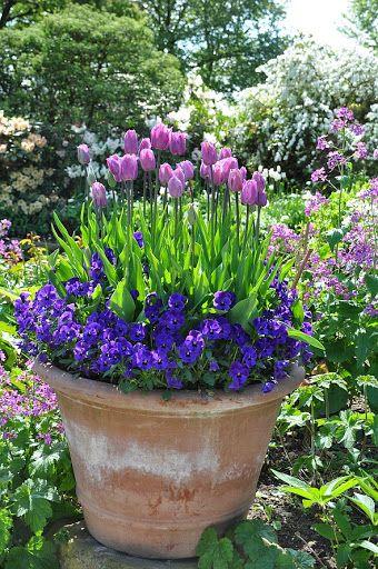 Garten lucenz bender flip picasa webalbums spring has sprung pinterest terracotta - Smeedijzeren pergola voor terras ...