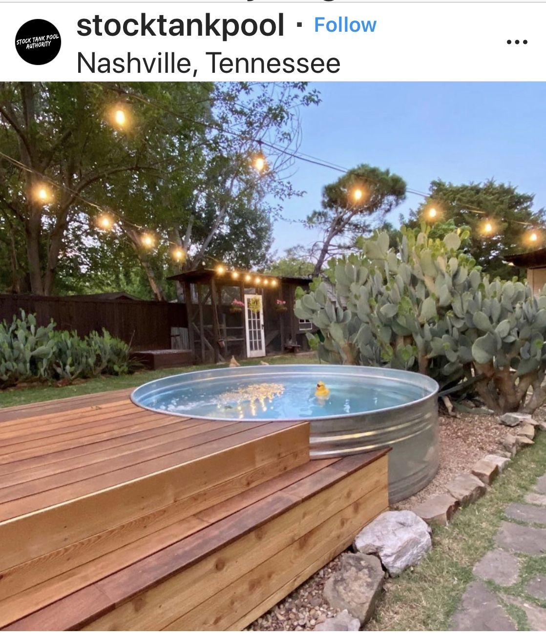 Pin By Coby Davis On Stock Tank Swimming Pool In 2020 Tank Pool Stock Tank Pool Diy Backyard Renovations