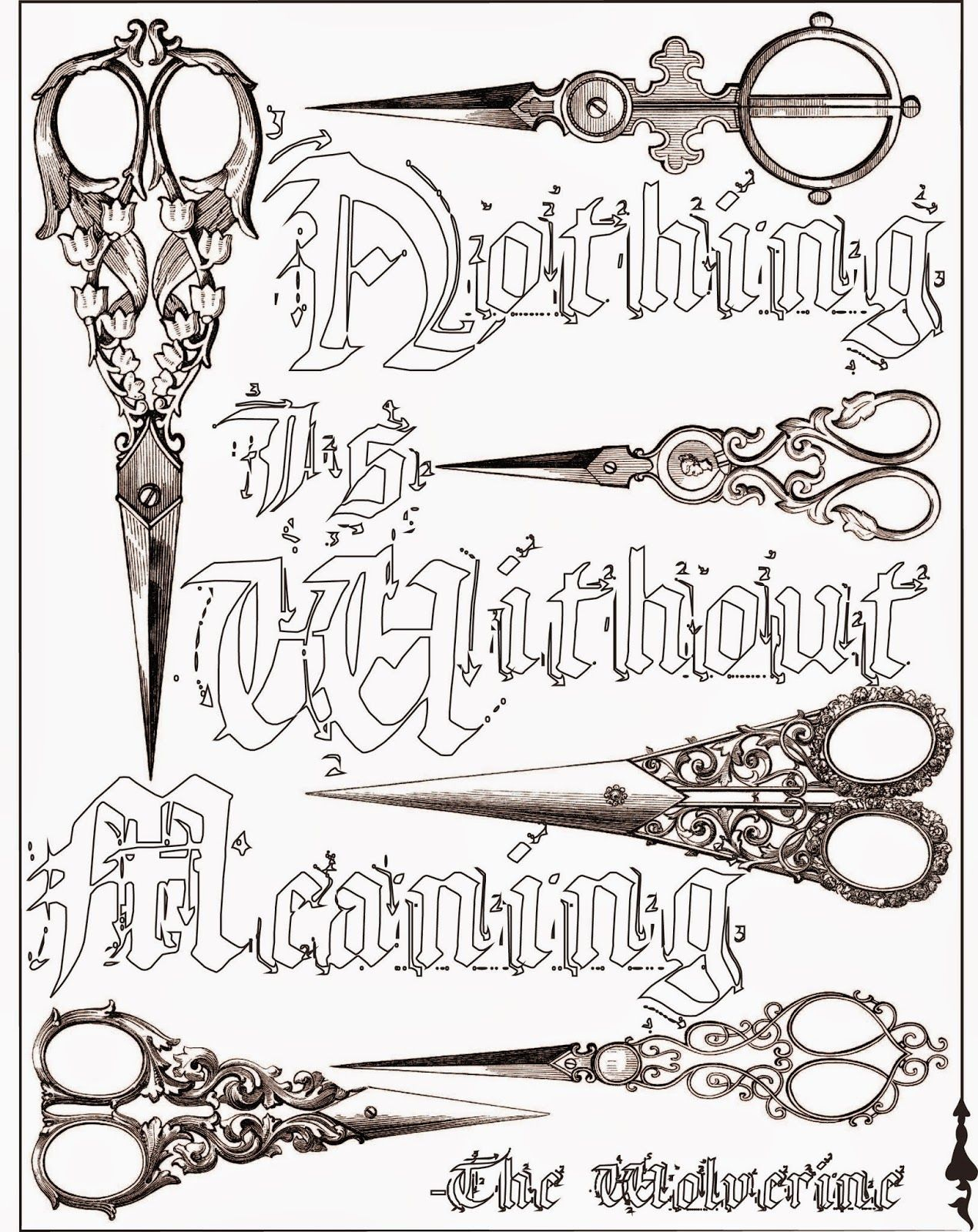 Coloring pages with quotes - Nothing Is Without Meaning Quote Adult Coloring Page Stefanie Girard Scissors