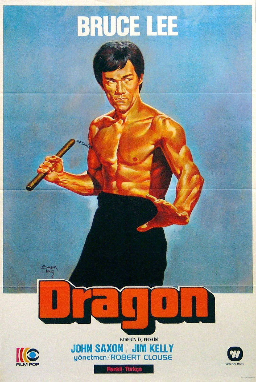Bruce Lee Kung Fu Poster 24x36 inch rolled wall poster