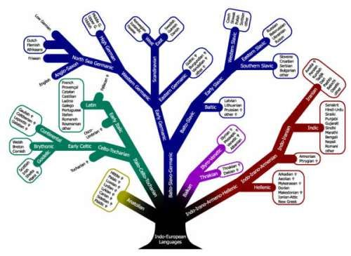 A very interesting tree diagram of the Indo-European language ...