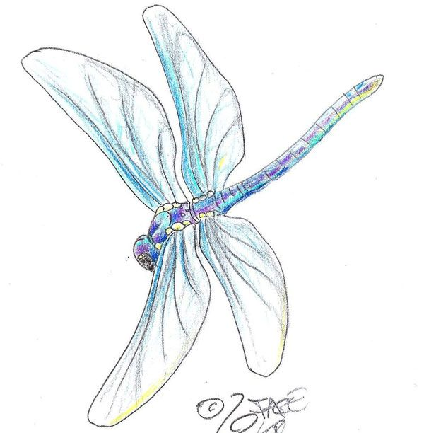 19a421b0bcd4c 25 Best Dragonfly Tattoo Designs and Placement Ideas | Tattoos ...