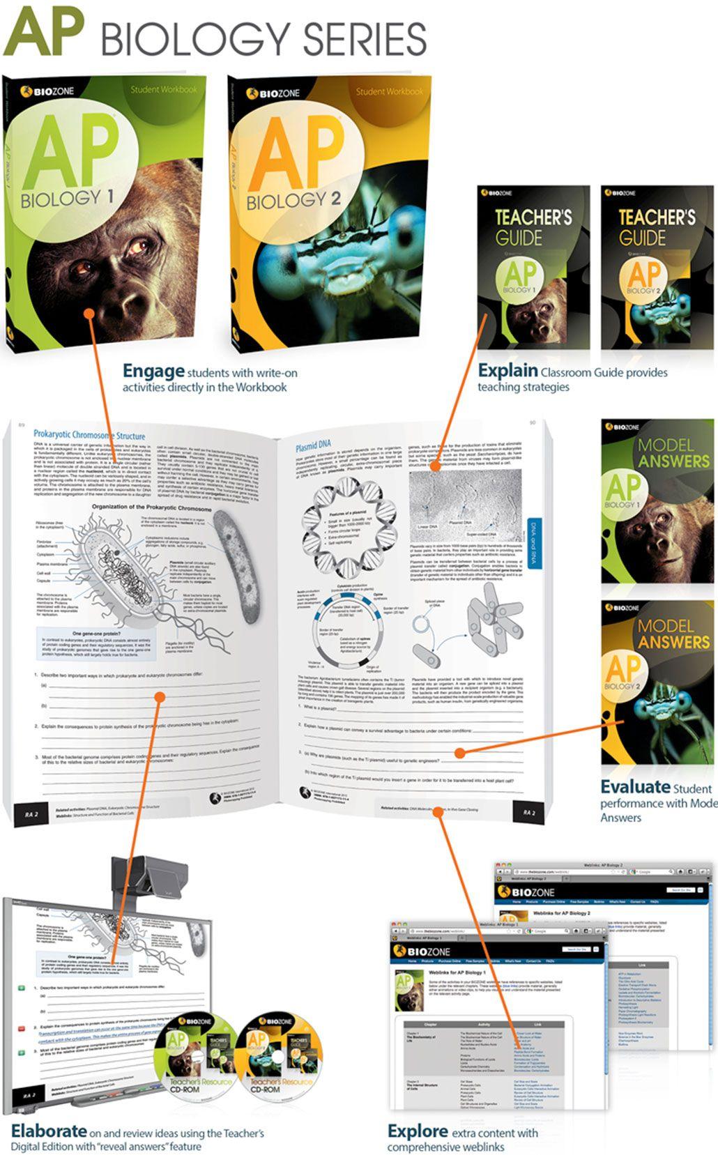 AP Biology 1 Student Workbook BIOZONE AP Biology 1 student – Biology Worksheets Pdf