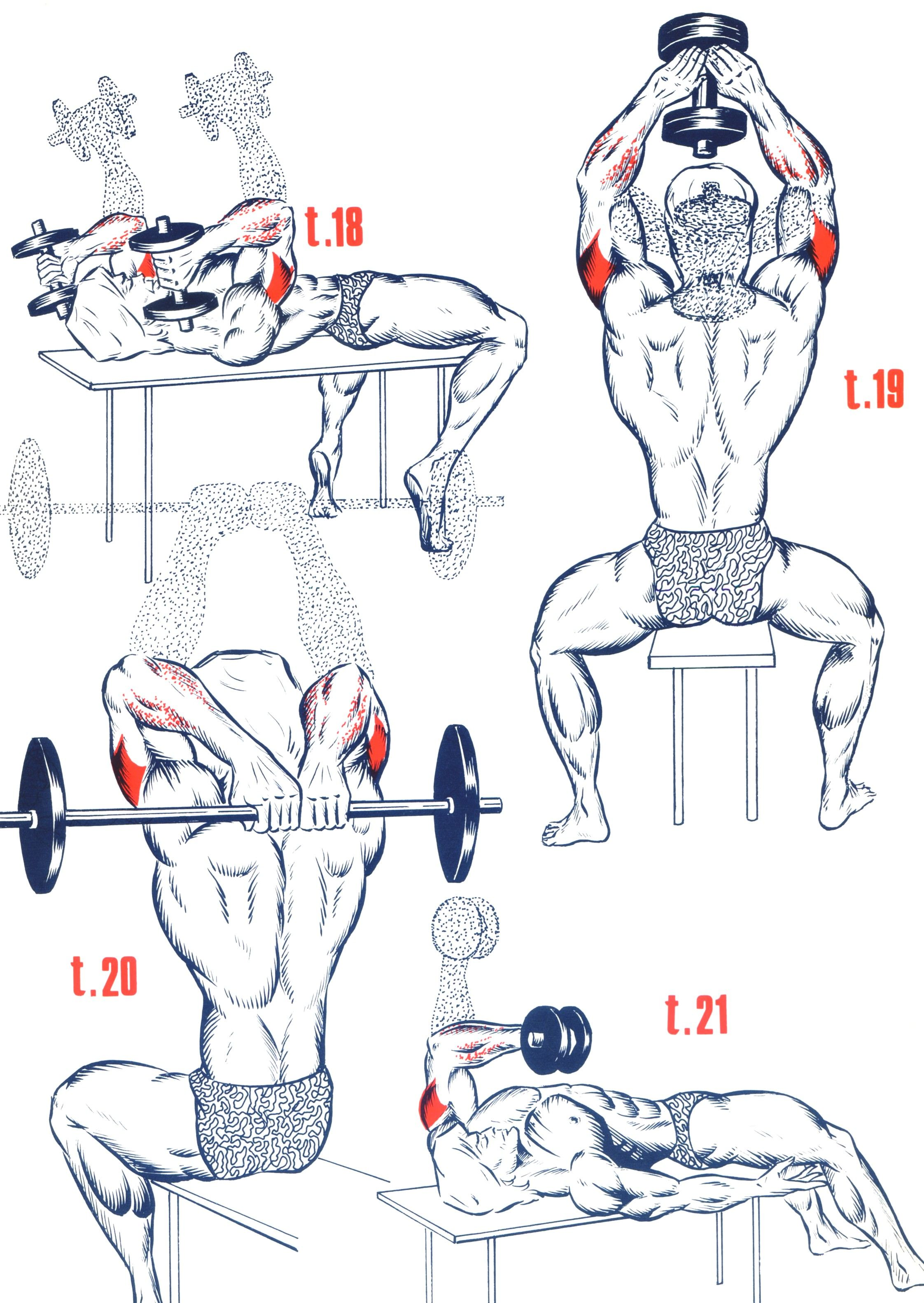 Exercices Triceps 02a9ee2828f