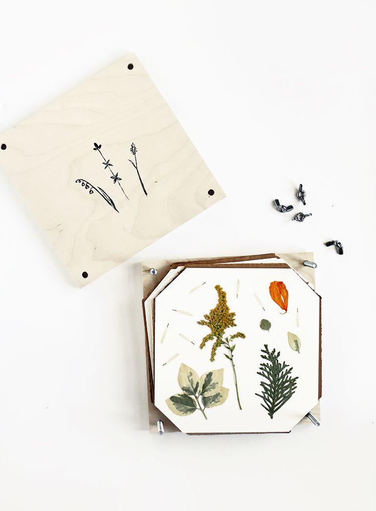 Diy Flower Press Diy Flower Flower And Craft