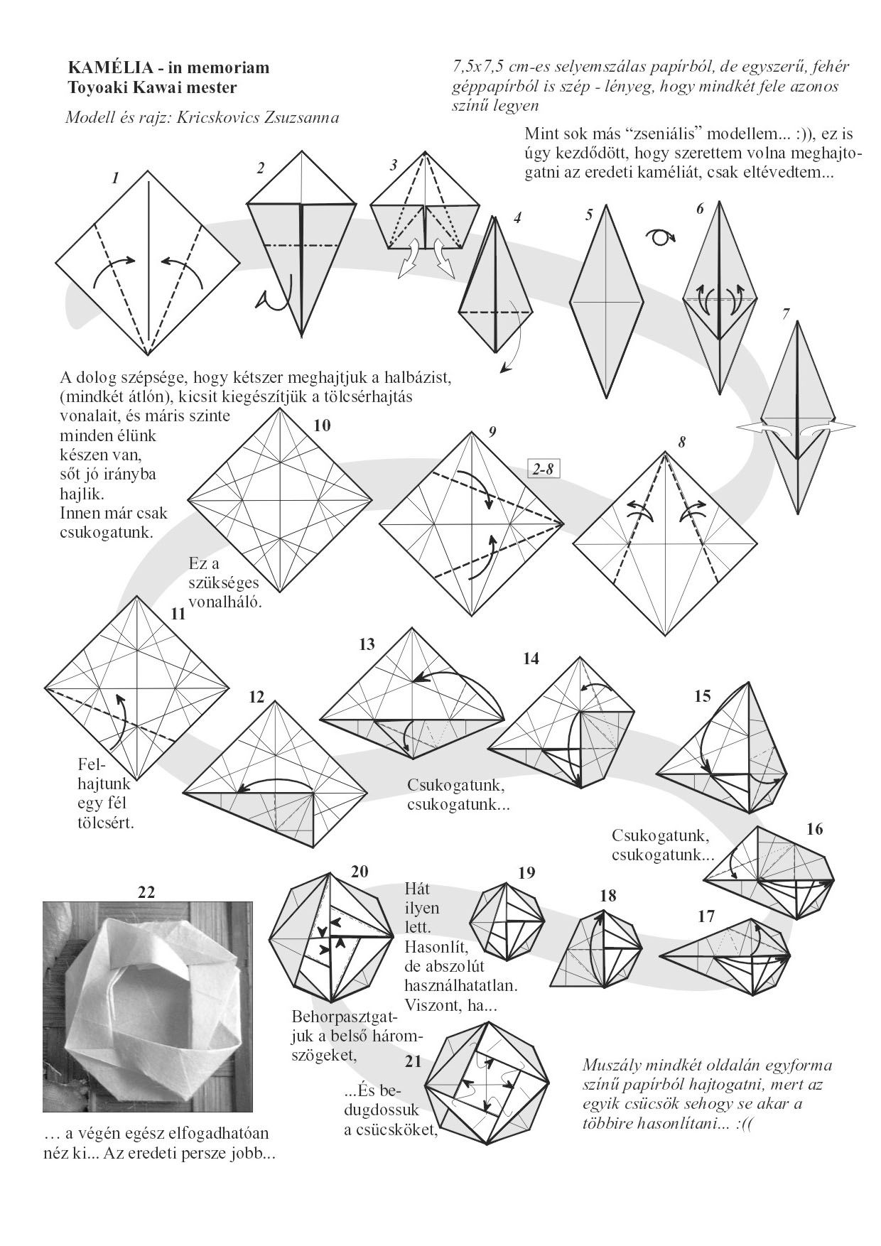 Flower Origami Kamelia Diagram 1240 X1754 Pixels