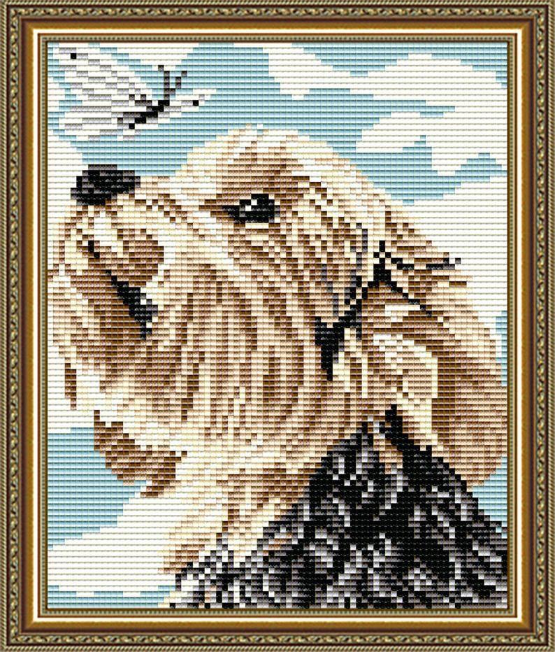 Diy diamond painting kit dog yorkshire terrier full square
