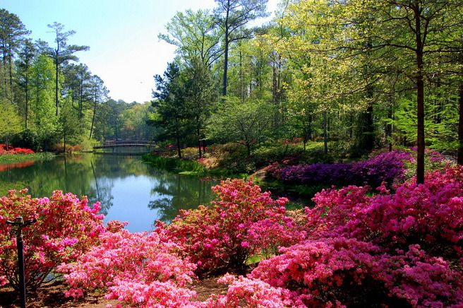 Great Callaway Gardens In Pine Mountain, Georgia Nestled In The Appalachian  Foothills, The Callaway Gardens Of Georgia Contains 13,000 Acres Of  Landscaped Gardens ...