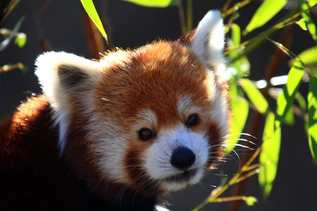 """I'm so glad we were able to catch up."" 