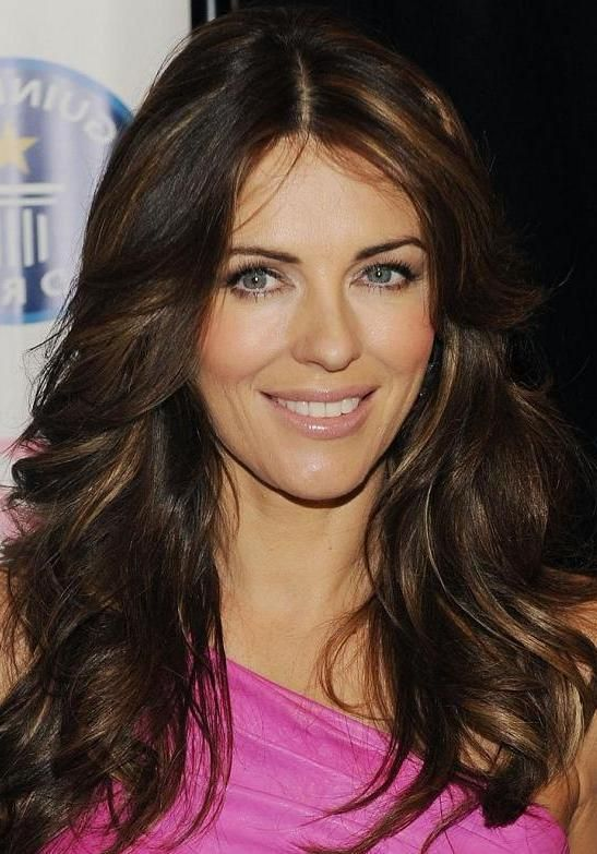 Long Dark Brown Hair With Light Brown Highlights Hair Pinterest