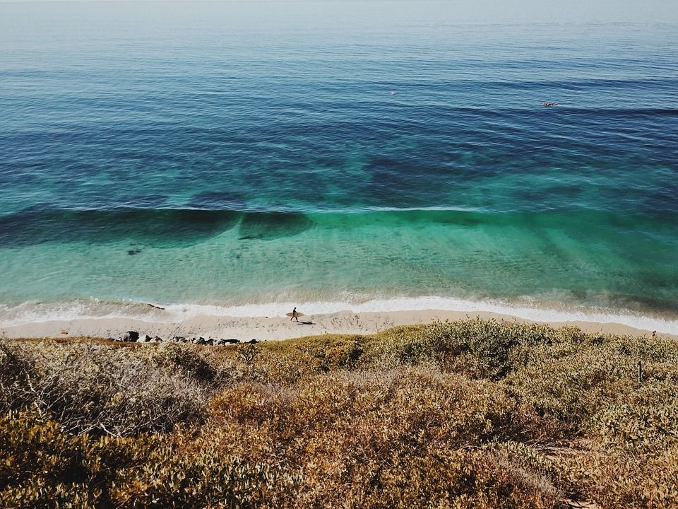 Beach, Surfer, Ocean, Sea, Transparent, Water, Fresh