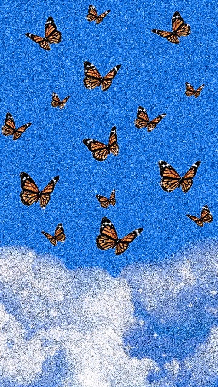aesthetic butterfly wallpaper blue #aesthetic #butterfly / aesthetic butterfly & aesthetic butterfly wallpaper & aesthetic butterfly painting & aesthetic butterfly drawing & aesthetic butterfly video & aesthetic butterfly wallpaper iphone & aesthetic butterfly wallpaper blue & aesthetic butterfly tattoo