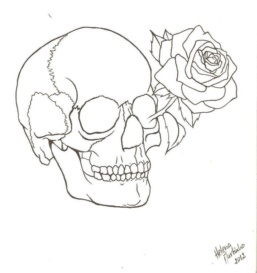 Skull Outline Skull And Rose Drawing Roses Drawing Flower Line Drawings