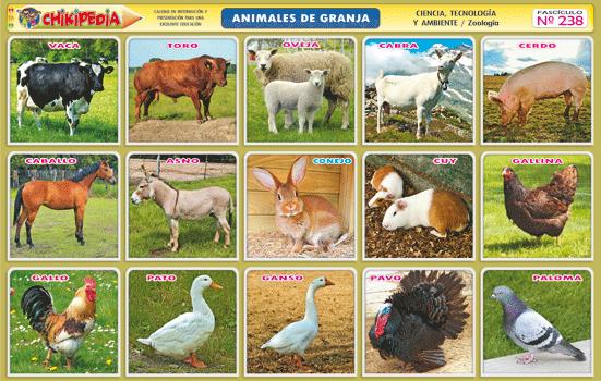 Animales de granjas lamina de animales de la granja - Laminas para la pared ...