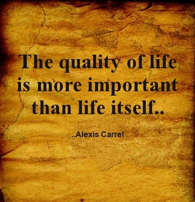 The Quality Of Life Is More Important Than Life Itself Alexis