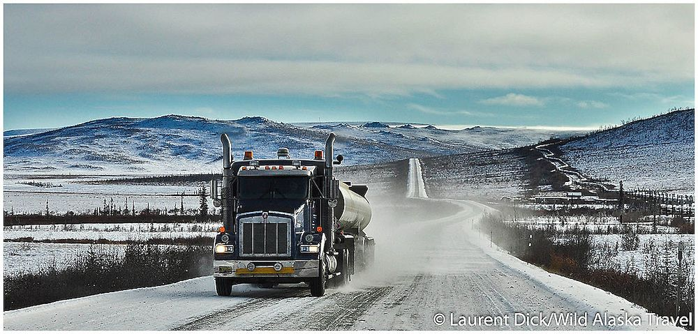 Pin by Joshua on Beauty | Lisa kelly, Ice road truckers