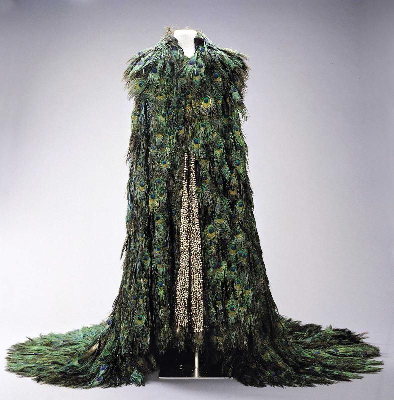 peacock feathers costume