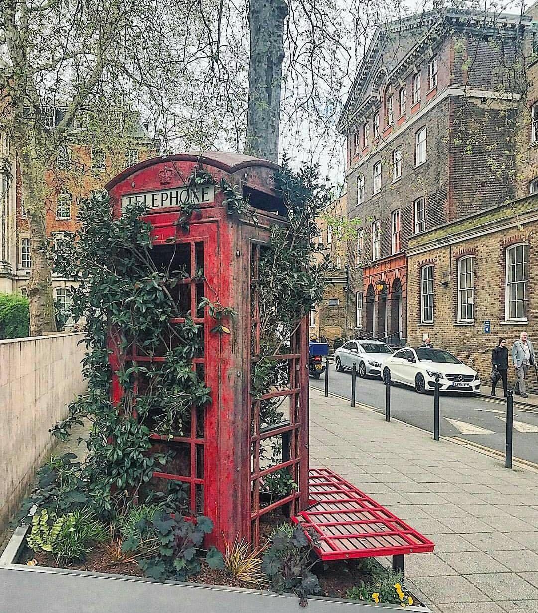 London Phone Box Now A Planter