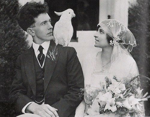 1920s wedding style weddings of yore pinterest 1920s wedding style junglespirit Image collections