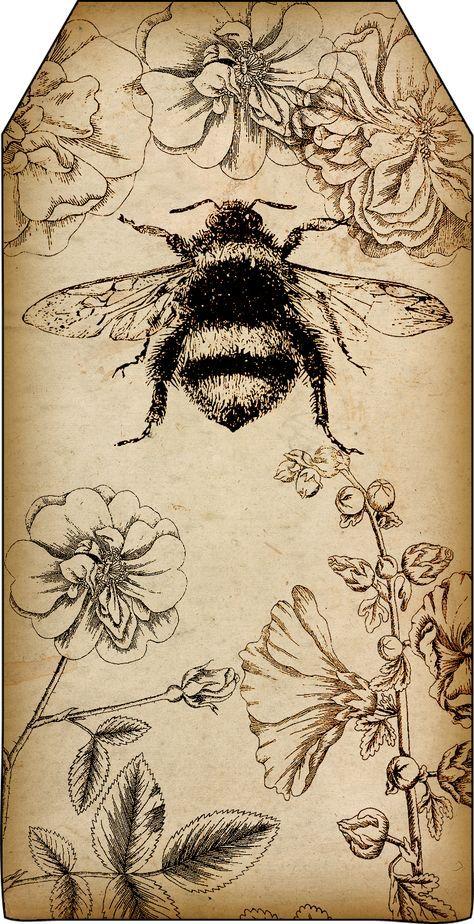 Free Printables: Bee and Beekeeping Tags