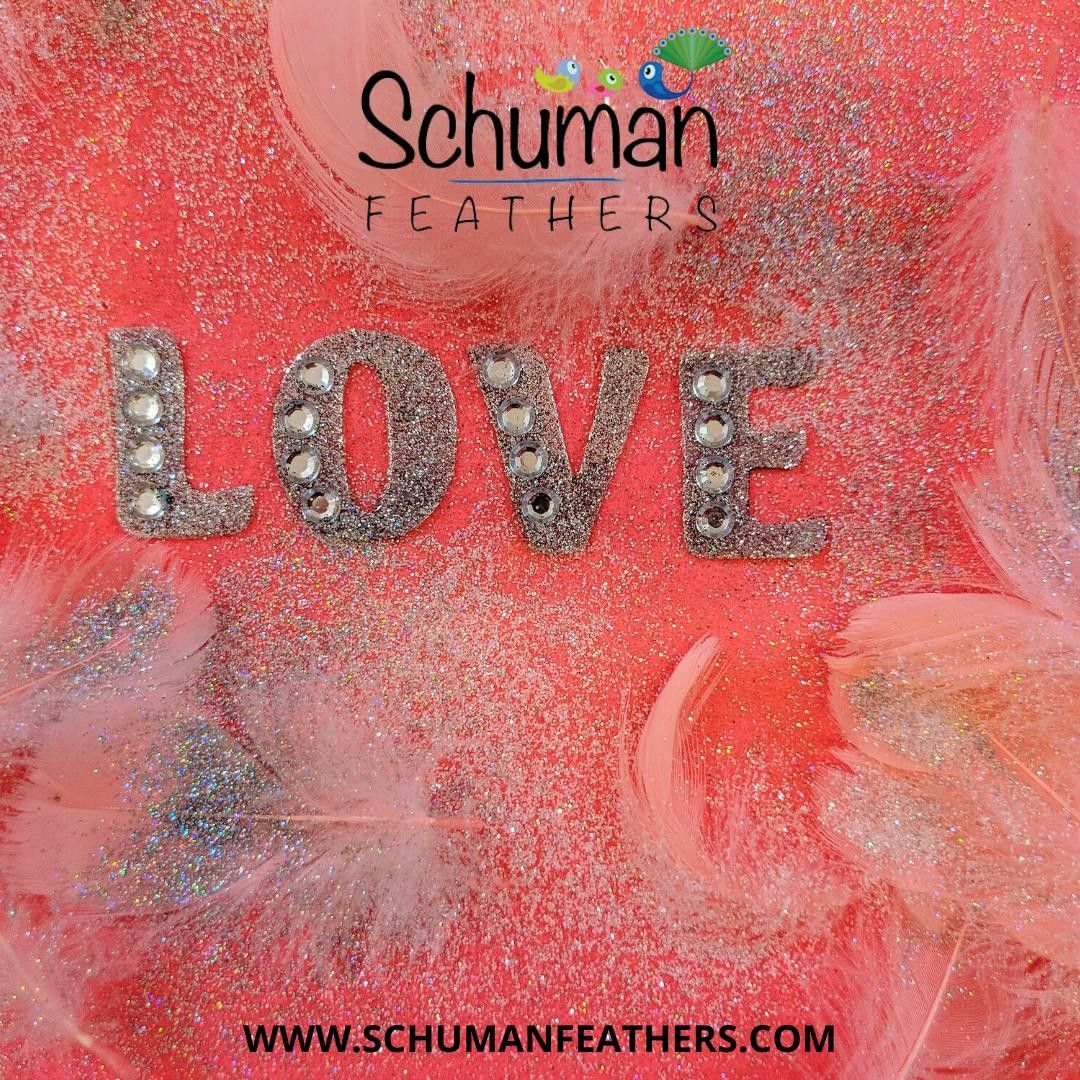 When Your Feathers Speak Your Language Love We Can Help You Find Your Own Feather Love At Www Schum Learning To Love Yourself I Love You Means Learn To Love