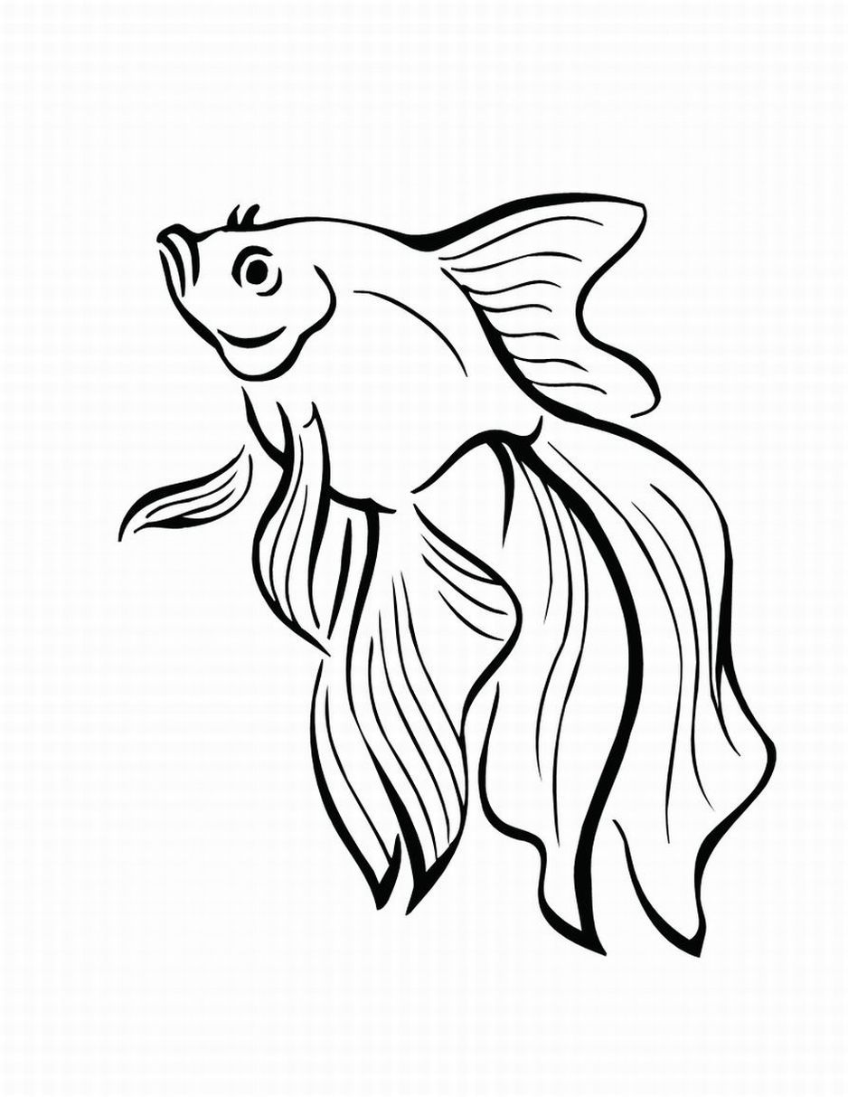 49+ Cute koi fish coloring page information