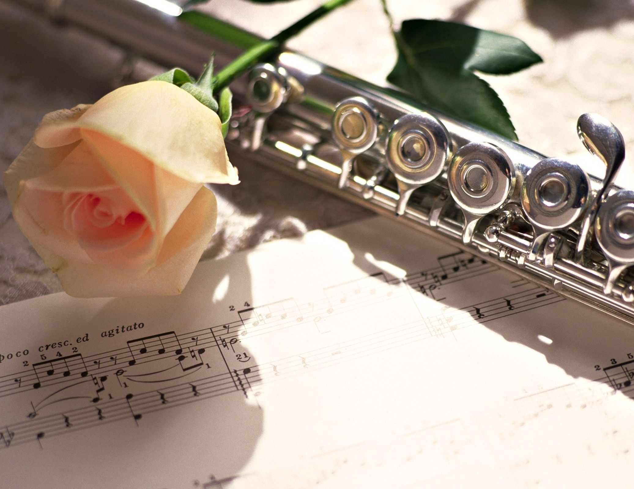 Definition of Flute by Merriam-Webster