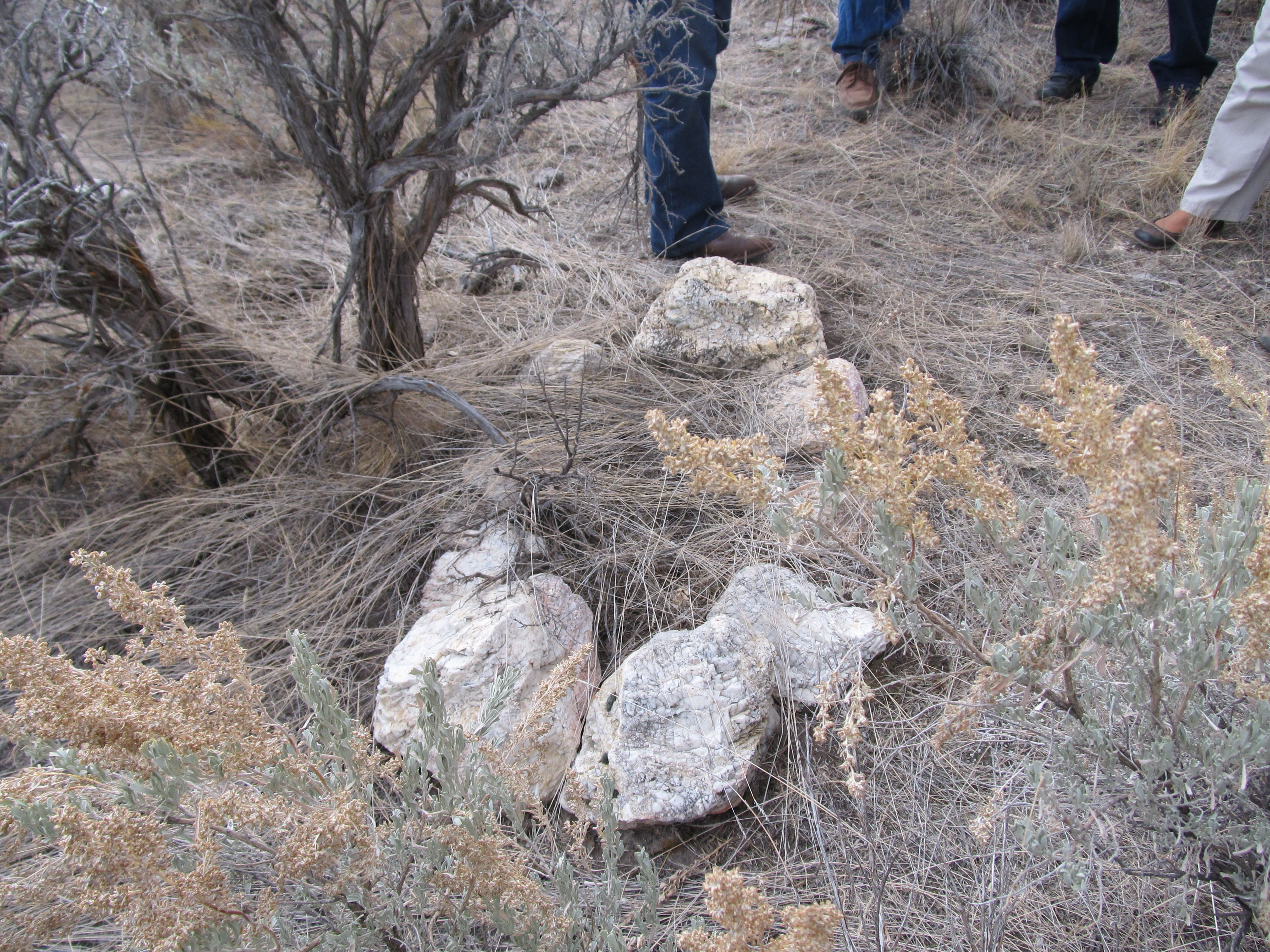 Oregon Trail Graves  Google Search