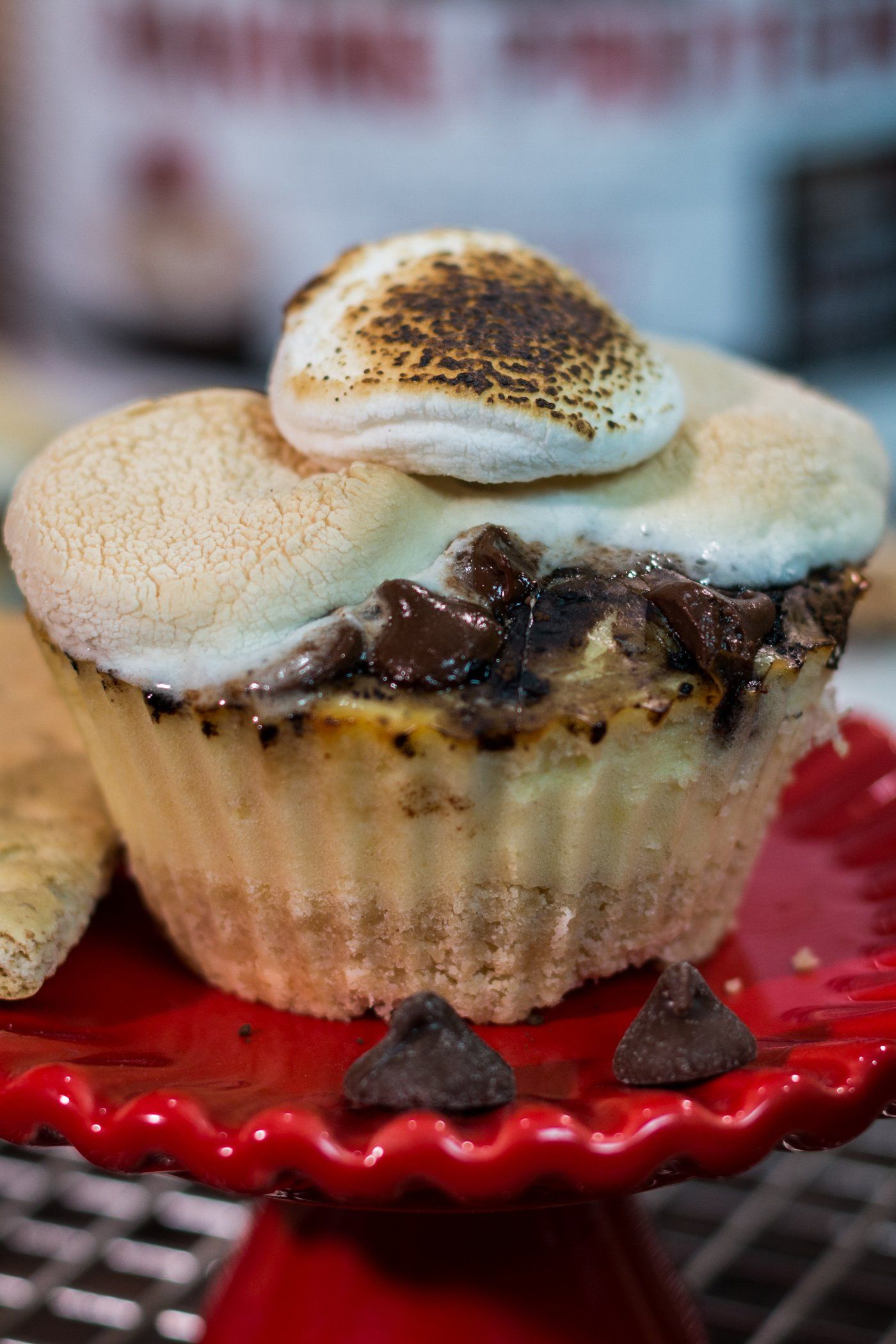 S'mores Cheesecake Protein Cupcakes Recipe - The Protein Chef