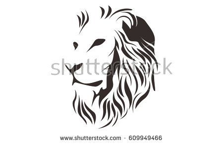 Line Art Lion : Image result for lion line drawing refrence lions