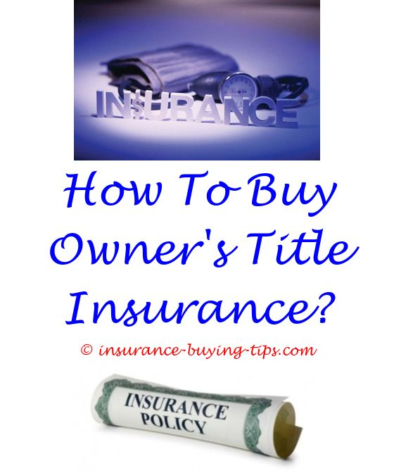 Renters Insurance Quotes Alluring Low Cost Auto Insurance Quotes  Buy Car Insurance And Renters Insurance