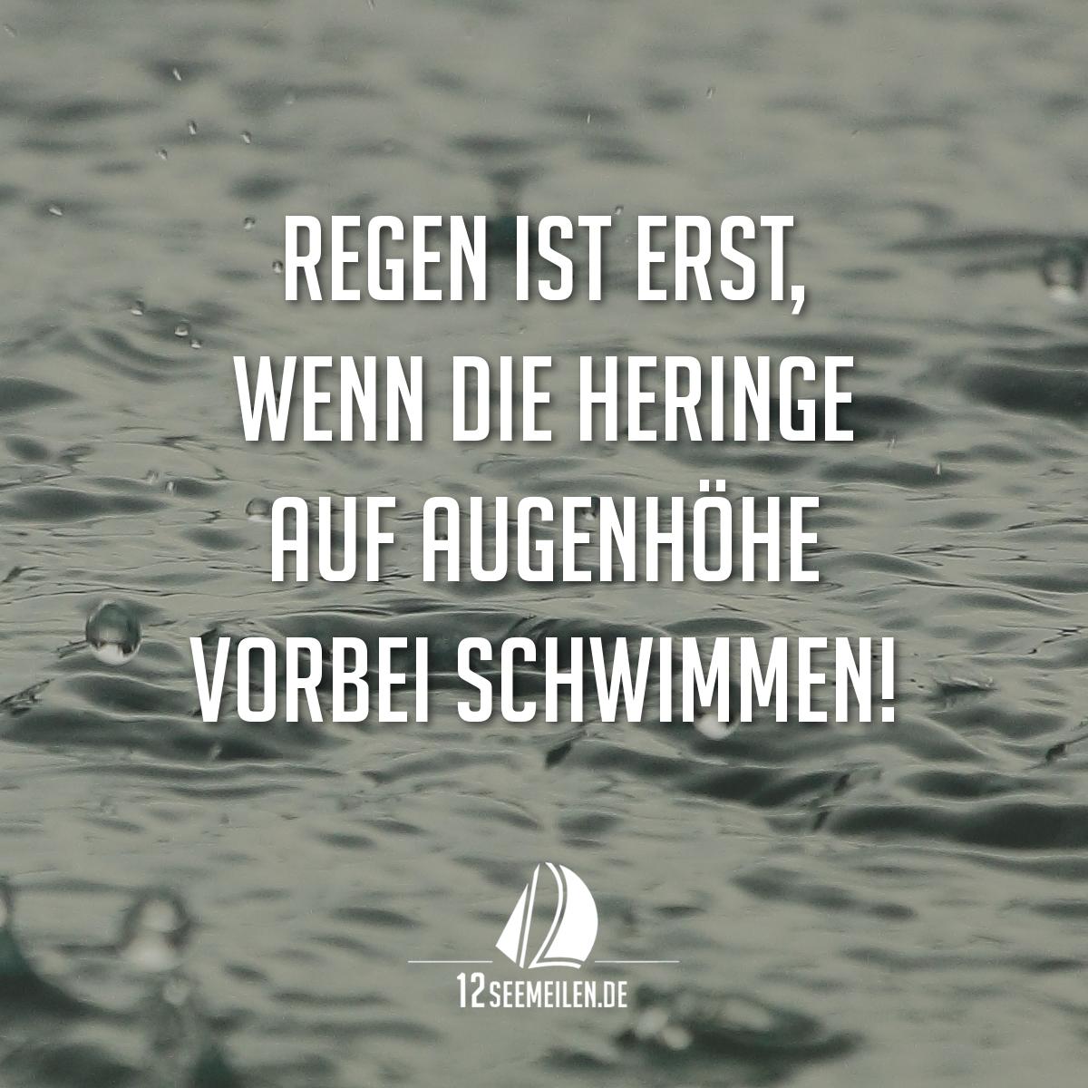 Regen ist erst wenn die heringe auf augenh he vorbei - Hamburg zitate ...